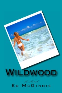 wildwood novel by ed mcginnis