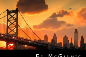 the dream garden crime novel ed mcginnis